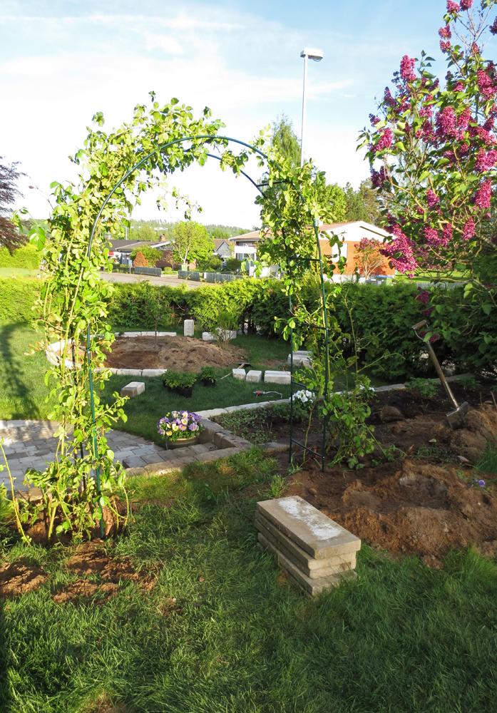 Rosenbågen från andra hållet. I bakgrunden ser ni att vi håller på att lägga mursten runt rabatten.